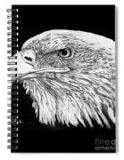 Bald Eagle #4 Spiral Notebook