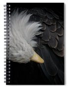 Bald Eagle Cleaning Spiral Notebook