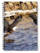 Bald Eagle Fishing Pano Spiral Notebook