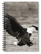 Bald Eagle Landing Spiral Notebook