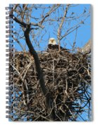 Bald Eagle Lookout  3661 Spiral Notebook