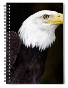 Bald Eagle - Pnw Spiral Notebook