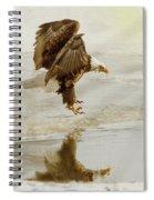 Bald Eagle Series #1 - Eagle Is Landing Spiral Notebook