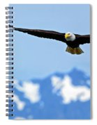 Bald Eagle Soars Over Hood Canal Spiral Notebook