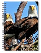 Bald Eagles In Nest Spiral Notebook