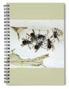 Bald Faced Hornets Spiral Notebook