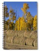 Rolls Spiral Notebook