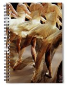 Ballet Dancers 05 Spiral Notebook