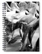 Ballet Dancers Spiral Notebook