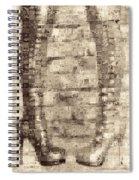 Ballet First Position No-nos Spiral Notebook
