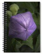 Balloon Flower Spiral Notebook