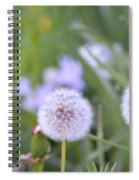 Balls Of Seed Spiral Notebook