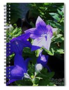 Baloon Flower Spiral Notebook