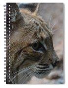 Bama Bobcat Spiral Notebook