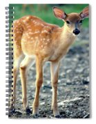 Bambi2 Spiral Notebook