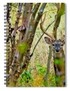 Bambi's Father Spiral Notebook