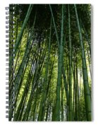 Bamboo 01 Spiral Notebook