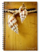 Bamboo And Conches Spiral Notebook
