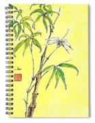 Bamboo And Dragonfly Spiral Notebook