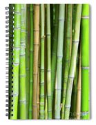 Bamboo Background Spiral Notebook