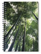 Bamboo Forest Spiral Notebook