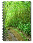 Bamboo Forest Trail Spiral Notebook