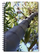 Bamboo Spiral Notebook