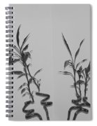 Bamboo Shutes Spiral Notebook