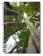 Bamboo View Spiral Notebook
