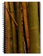 Bambusa Vulgaris Spiral Notebook