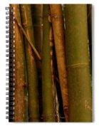 Bambusa Vulgaris Spiral Notebook
