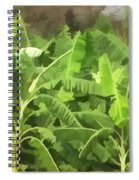 Banana Plantation Spiral Notebook