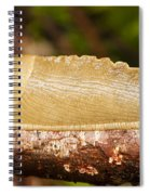 Banana Slug Spiral Notebook