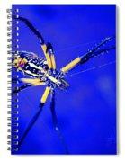 Banana Spider Spiral Notebook