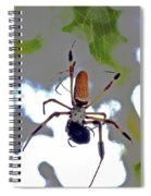Banana Spider Lunch Time 1 Spiral Notebook