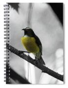 Bananaquit Spiral Notebook
