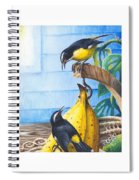 Bananaquits And Bananas Spiral Notebook
