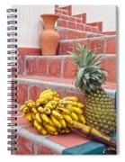 Bananas And Pineapple On Terracotta Steps Spiral Notebook