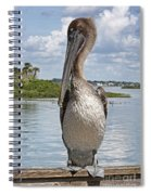 Banded Beauty Spiral Notebook