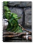 Bandit Birds Spiral Notebook