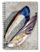 Bandon 13 Spiral Notebook