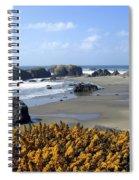Bandon 4 Spiral Notebook
