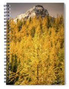 Banff Golden Larch Dream World Spiral Notebook