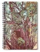 Baoba In Foliage Spiral Notebook