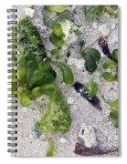 Barbados Beach Life Spiral Notebook