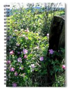 Barbed Wire And Roses Spiral Notebook