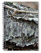 Bark - Lichen - Cat Brier Tendrils Spiral Notebook