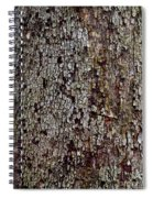 Bark Spiral Notebook