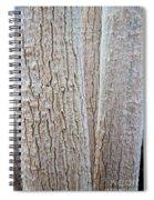 Bark, Moringa Tree Spiral Notebook