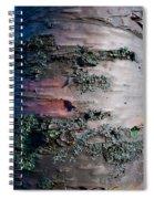Bark Spiral Notebook